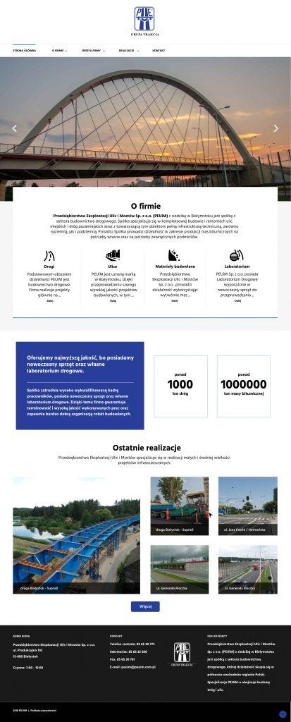 Projekt graficzny peuim.com.pl