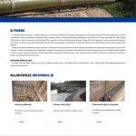strona internetowa wersja 1